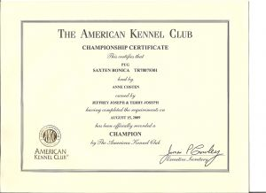 American Kennel Club Championship